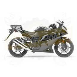 Ninja 250 / R 2008 - 2012
