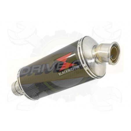 R1150 R ROCKSTER exhaust Silencieux kit & Ovale En Carbone Silencieux 300mm