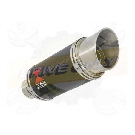 R1150 R ROCKSTER exhaust Silencieux kit & Rond En Carbone Silencieux 200mm