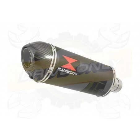 VFR800F VFR 800 1997-2003 (RC46) Ligne complètes & Ovale Noir Silencieux En Inox + Carbon Tip 300mm