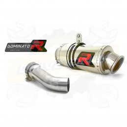 Silencieux sport Dominator : R 1200 R 2010 - 2014