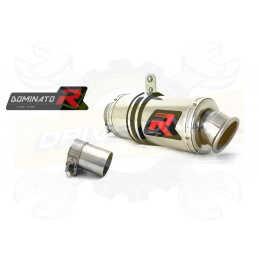 Silencieux sport Dominator : R 850 R 2004 - 2007