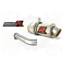 Silencieux sport Dominator : R 1200 R 2006 - 2009