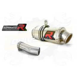 Silencieux sport Dominator : F 800 GT 2013 - 2016