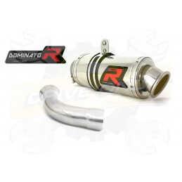 Silencieux sport Dominator : F 800 S 2006 - 2012