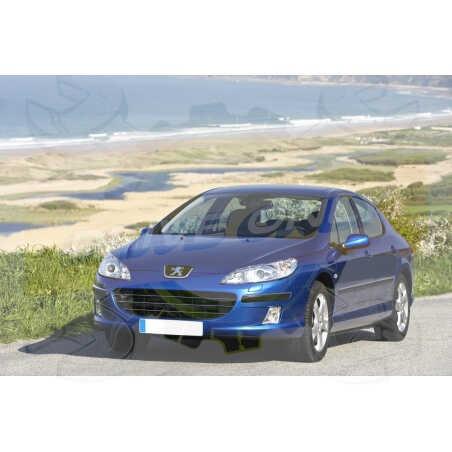 Ampoules Xénon de remplacement pour Peugeot 407 berline & break 2004 - 2011