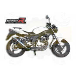 Silencieux sport Dominator : Roadsport / Roadtwin R 125 2010 - 2016