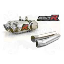 Silencieux sport Dominator : Monster / Mostro M 750 1996 - 2002