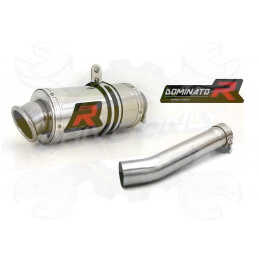 Silencieux sport Dominator : CBF 1000 F 2010 - 2013