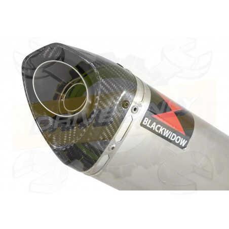GSX1200 INAZUMA Ligne complète& Silencieux Tri Ovale en Inox + Canule enCarbone250mm