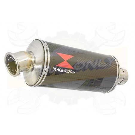 GSX1250FA GSX 1250 2010-2016 Refroidissement à Eau / Tube de raccord + Silencieux Ovale En Carbone 300mm