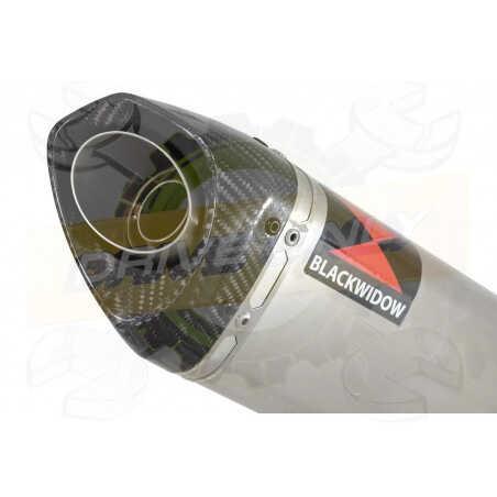 GSX1200 InazumaTube de raccord et Silencieux Tri Ovale En Inox & Canule en Carbone250mm
