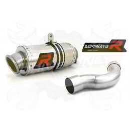 Silencieux sport Dominator : CBR 1000 RR Fireblade 2008 - 2013