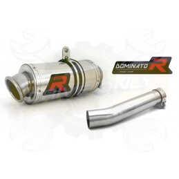 Silencieux sport Dominator : DL 650 V Strom 2004 - 2006
