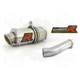 Silencieux sport Dominator : GSX F 650 / 1250 2007 - 2014
