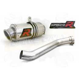 Silencieux sport Dominator : YZF R1 2002 - 2003