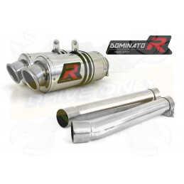 Silencieux sport Dominator : TDM 900 2002 - 2009
