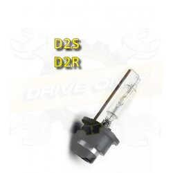 Ampoule D2S