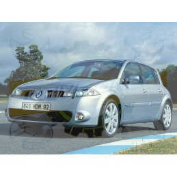 Ampoules Xénon de remplacement pour Renault Mégane 2 Phase  1 2002-2006