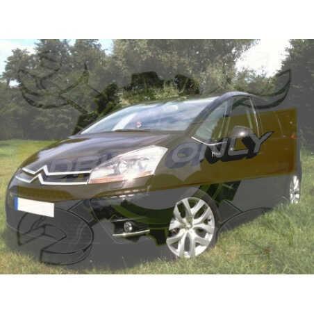 Ampoules Xénon de remplacement pour Citroën C4 Picasso 1, 2006-2013