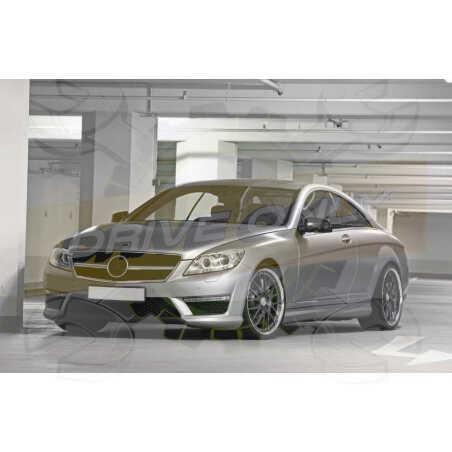 Ampoules Xénon de remplacement pour Mercedes Classe S C216, 2006-2013