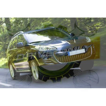 Ampoules Xénon de remplacement pour Peugeot 4007 2007 - 2012