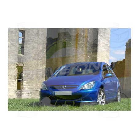 Ampoules Xénon de remplacement pour Peugeot 307 2001 - 2008