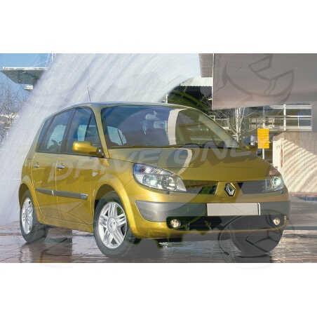 Ampoules Xénon de remplacement pour Renault Scénic 2, 2003-2009