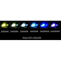 Kit xénon slim pour DTR 1990 - 2003