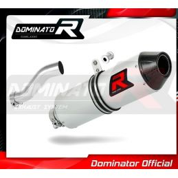 Silencieux sport Dominator Carbone  : Renegade 800