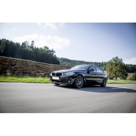 Ampoules Xénon de remplacement pour BMW Série 3 F34 GT, 2012-2016