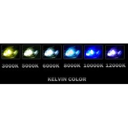 Kit xénon slim pour Zx6R  2000 - 2002