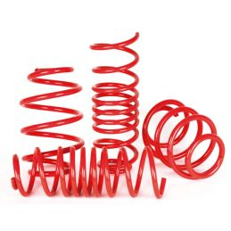 Ressorts Courts progressifs -25mm Direnza TT 8n Coupe / Roadster 1.8T 2 Roues motrices 150 / 163 / 180 1998 - 2005