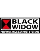 Silencieux et lignes  Black Widow