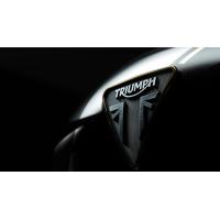 Daytona 675 / 675R